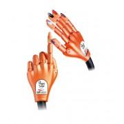 Hand voor oefenen Nail trainer