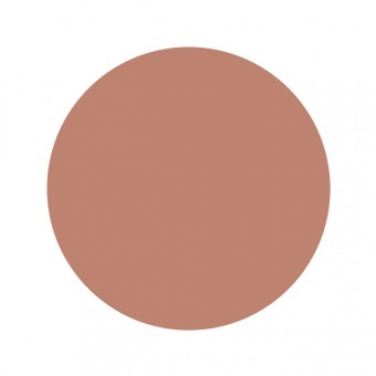 Tester blusher abricot 3g