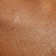 Geïriseerd glinsterpoeder abricot 12g