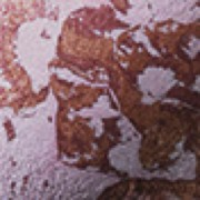 Poeder mosaïc désert rose 7g